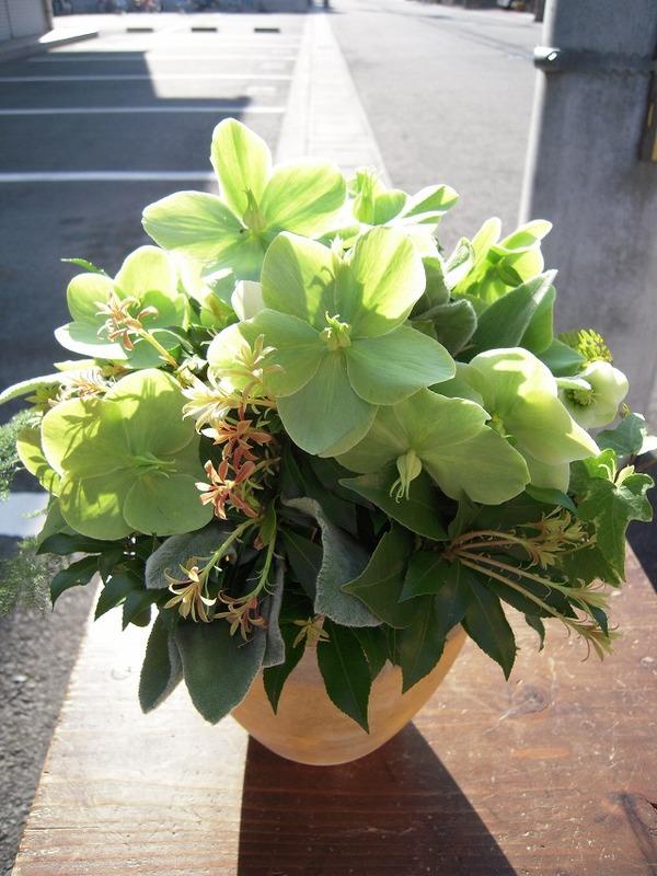 結婚記念日に贈るクリスマスローズの花束のサムネイル